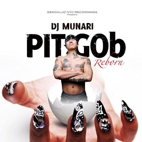 Pitgob_Reborn
